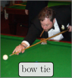 Mislabeled ImageNet Sample: Bow Tie